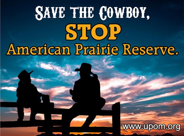 BLM Sets Aside American Prairie For Buffalo